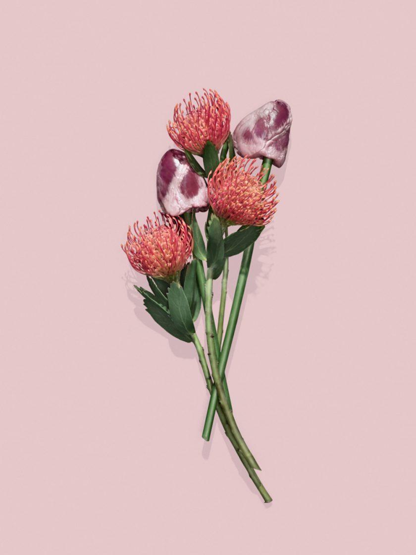 Fleur-Viande-Ulysse-Darcoe-Tafmag-2-768x1024