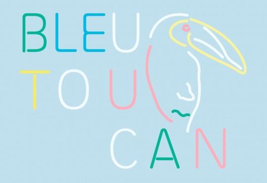 [SORTIE] Le nouveau titre de Bleu Toucan, 'Le chant du cygne'