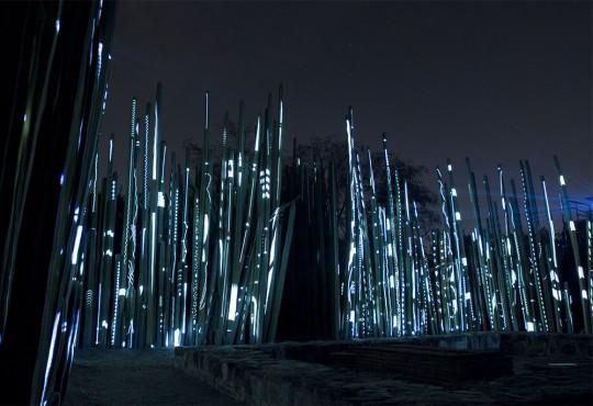 PORTRAIT // Romain Tardy l'illuminateur