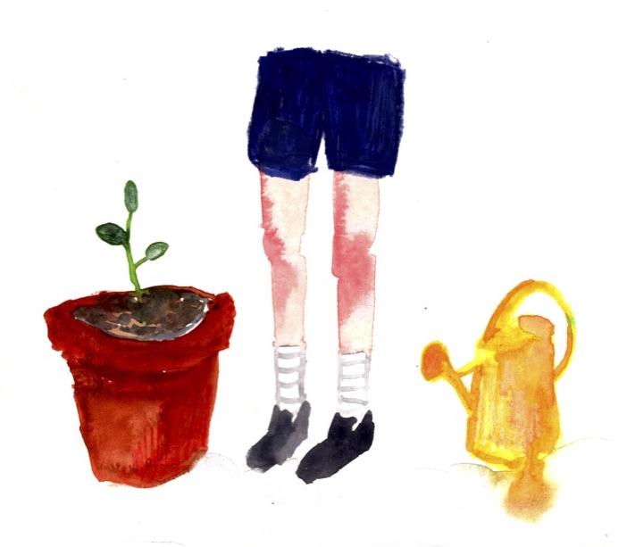 mini pousse VICTORIA DORCHE tafmag jaune cochon illustration