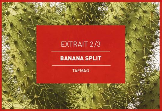 EXTRAIT // 'Banana Split' : on dévoile la planche dédiée à la photographe Camille Sonally