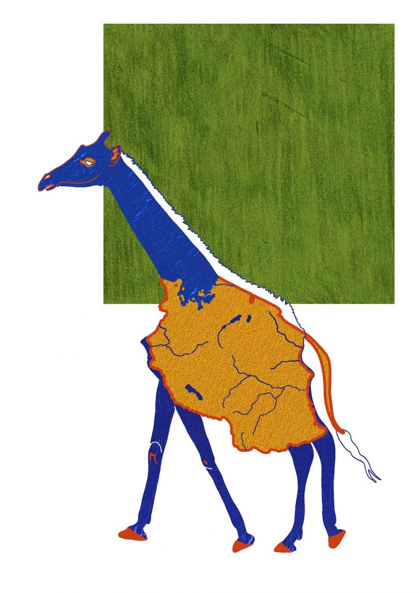 3.tanzanian.giraffe ellis van der does tafmag illustration dessin