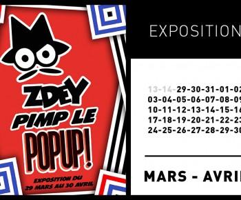 EXPOSITION ZDEY @ LE POP UP DU LABEL