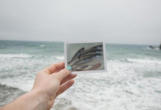 FLASH // Découvrez 'Selfish', la série photographie de Clémentine Passet